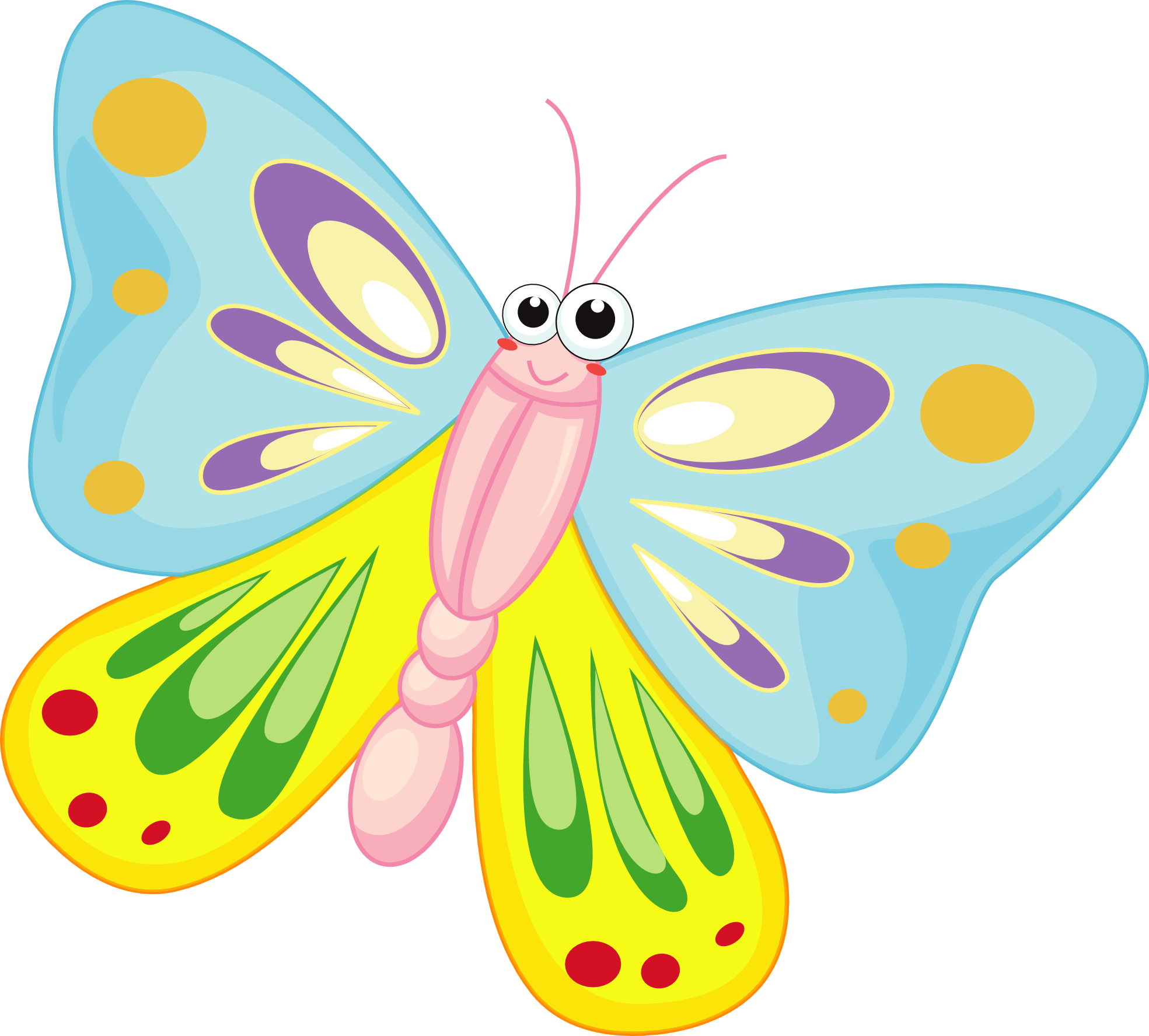 Butterfly Cartoon Pictures   Cliparts Co