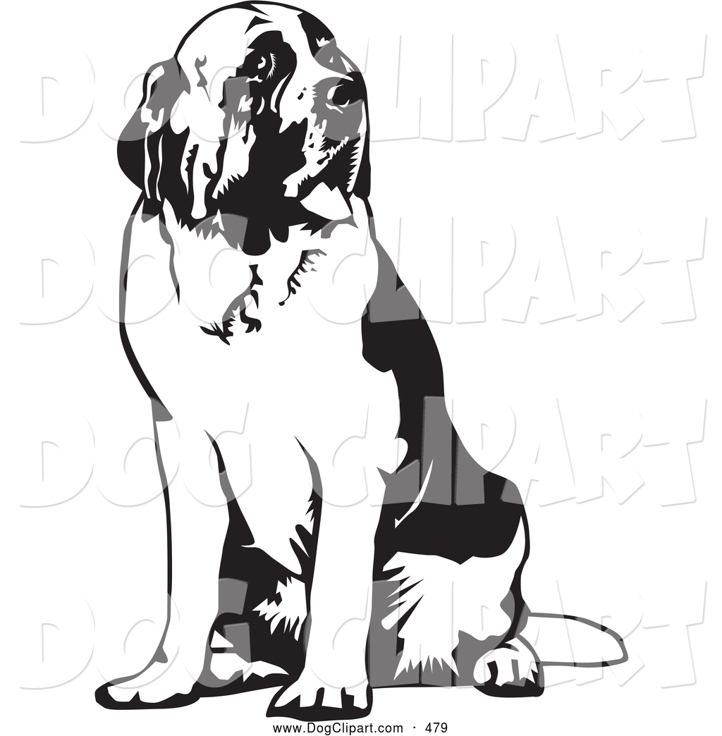 Clip Art Of A Large Saint Bernard Dog Spanting And Sitting Looking
