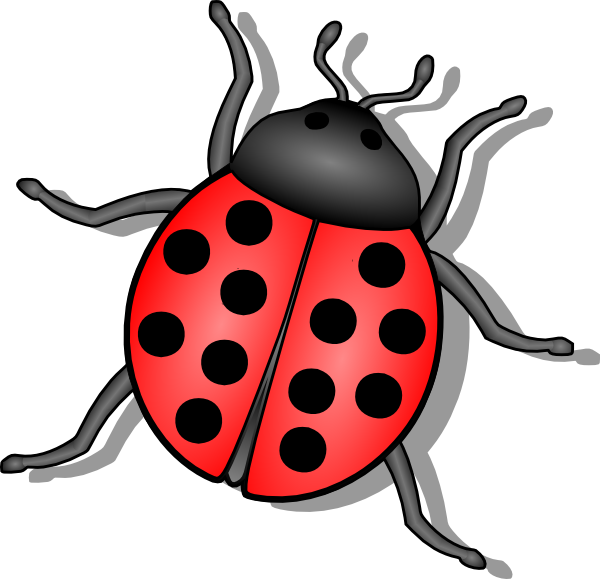 Insect Clipart Clipart Suggest