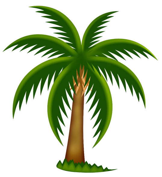 Palm Tree Clipart Ycopykxxi Png