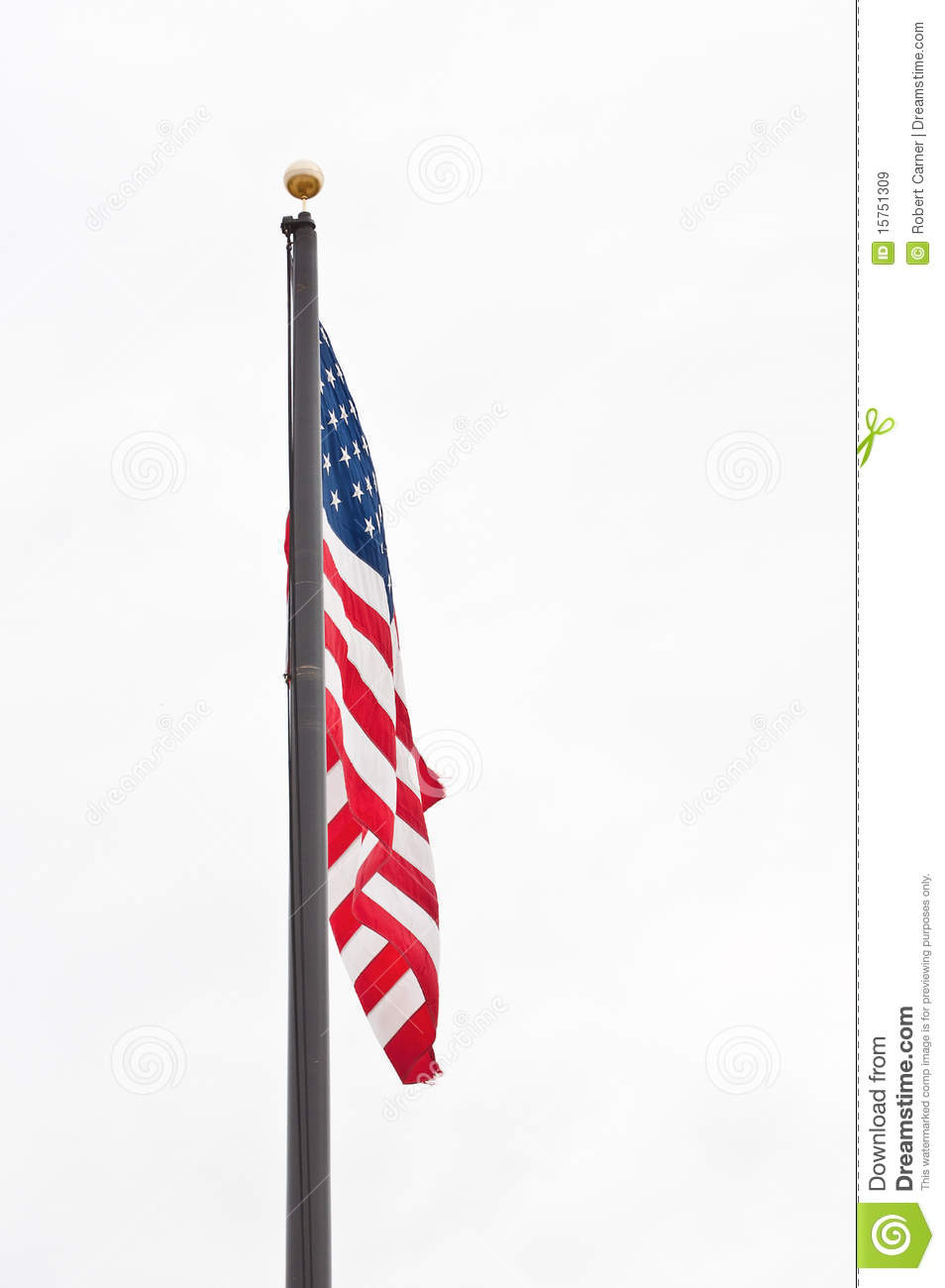 2020 Other | Images: Flag Pole Vector