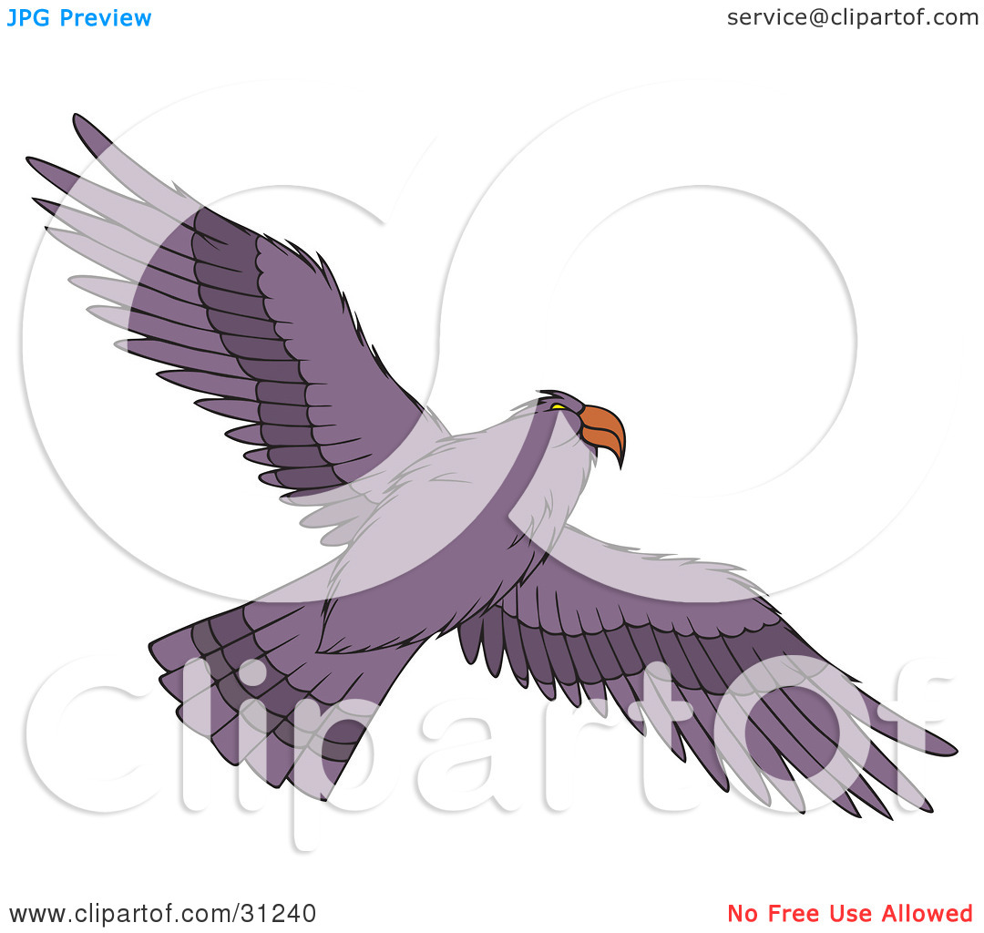 Clipart Illustration Of A Flying Purple Hawk As Seen From Below Its