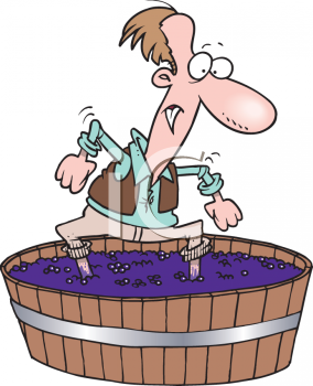 Man Stomping Grapes In A Barrel For Wine   Royalty Free Clipart Image