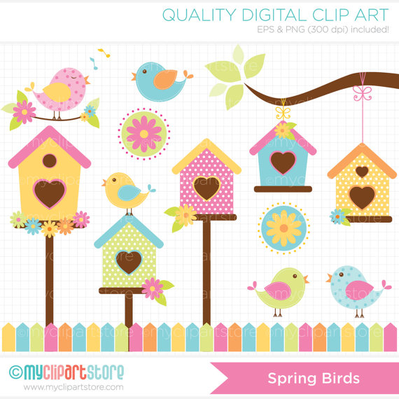 Spring Birds Clip Art   Digital Clipart Instant By Myclipartstore