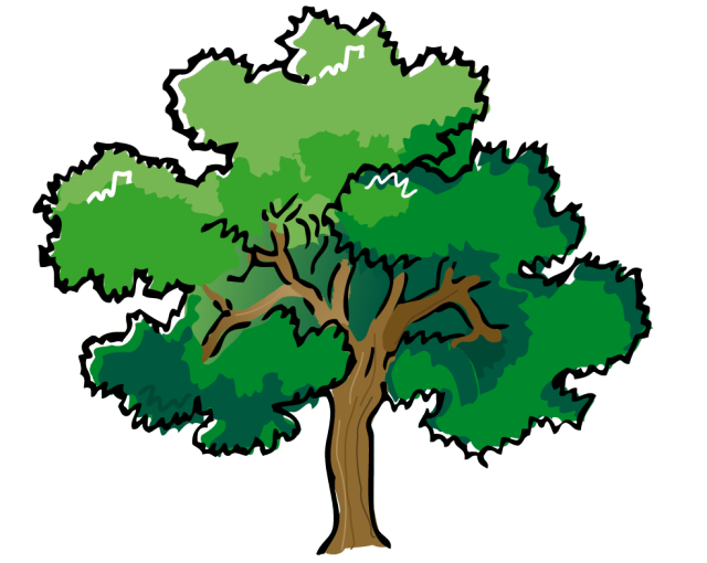 Summer Tree Clip Art Images   Pictures   Becuo