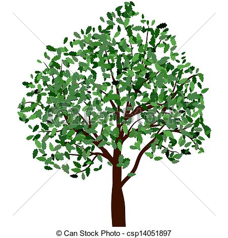Summer Tree With Green Leaves  Eps 10 Vector Illustration