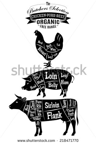 Vector Diagram Cut Carcasses Of Chicken Pig Cow   Stock Photo