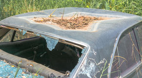 Old Dirty Car With Busted Window Royalty Free Stock Photography