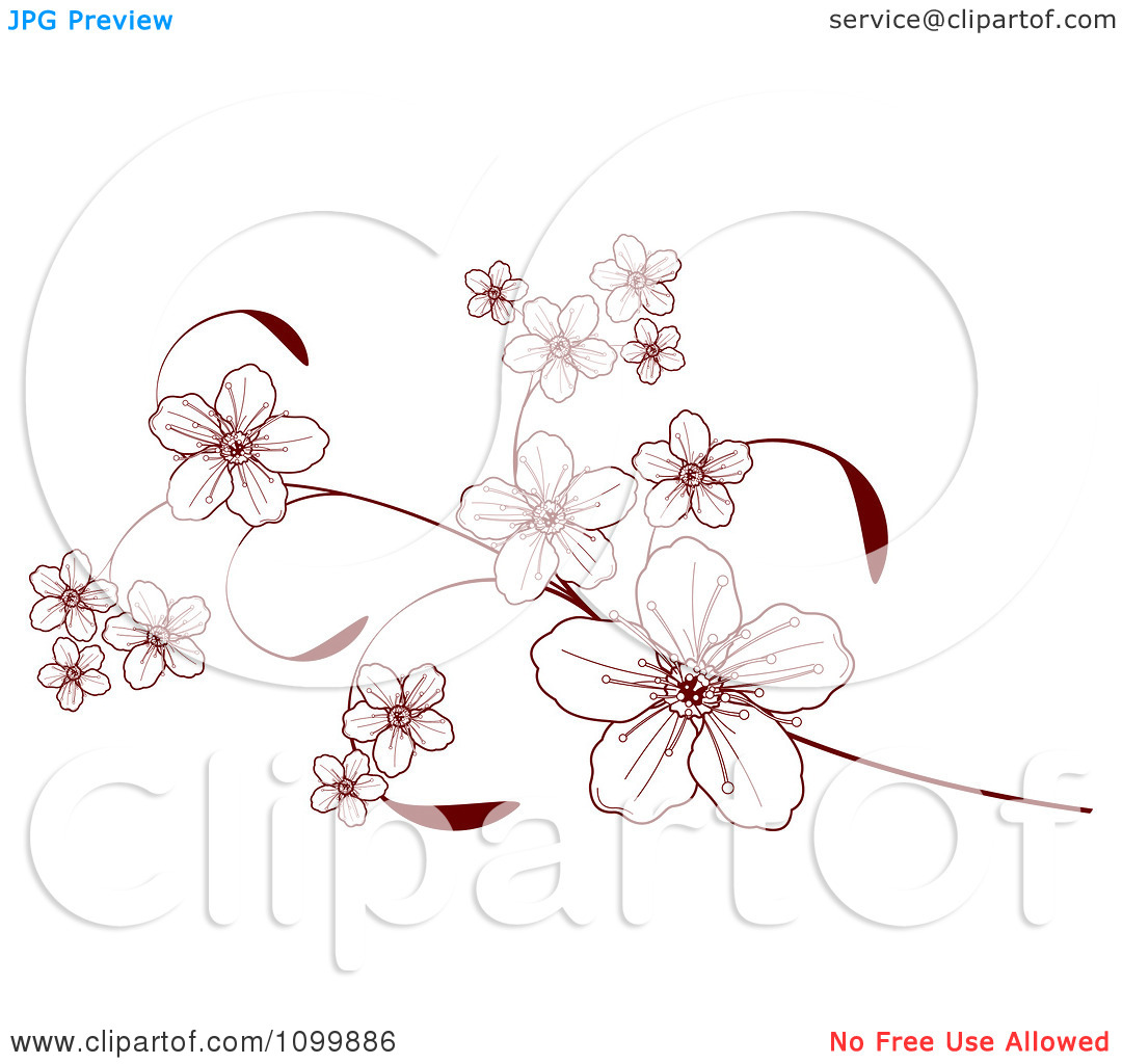 Clip Art Tree Blossoms Clipart - Clipart Kid