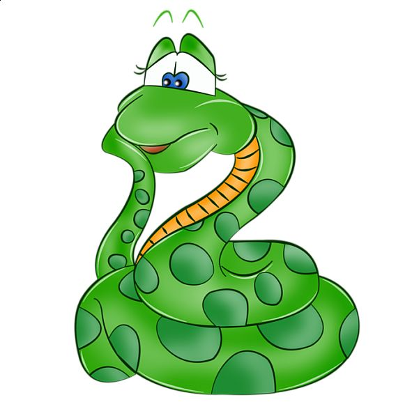 ... clipart-more-clipart-jungle-zoo-cartoon-snakes-animal-Y1Biif-clipart
