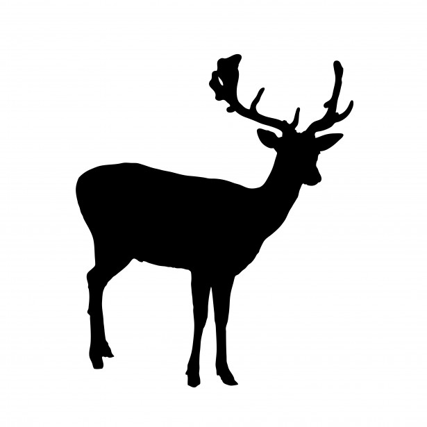 Deer Silhouette Clipart Free Stock Photo   Public Domain Pictures