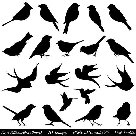 Birds On Branch Clip Art   Google Search   To Do   Inspiration   Pint