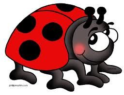 Lady Bird Clip Art   Google Search   Ladybirds   Pinterest