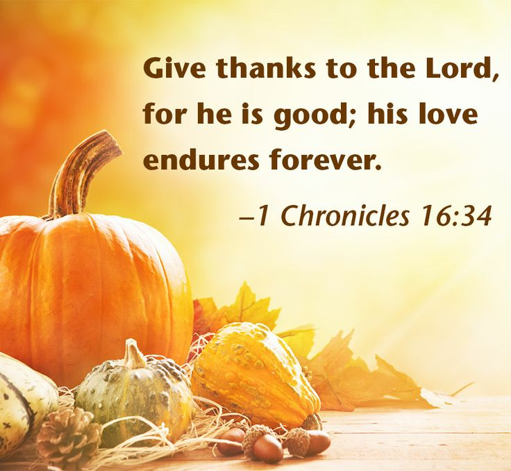 Pinterest   Thanksgiving Happy Thanksgiving And Bible Verses