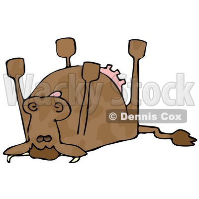Dead Cow Lying On Its Back Its Feet Strait Up Clipart Illustration
