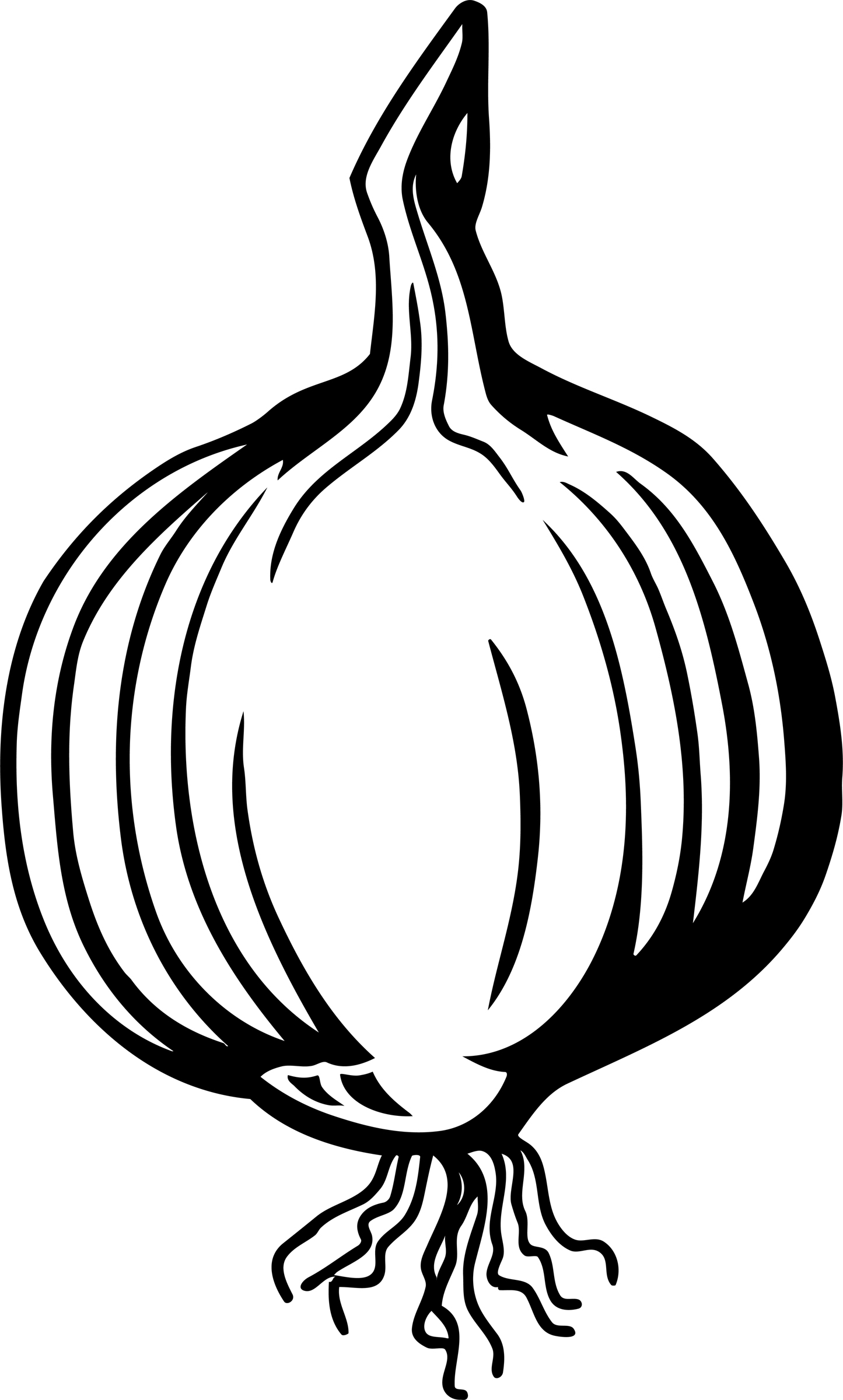 White Onion Clip Art �...