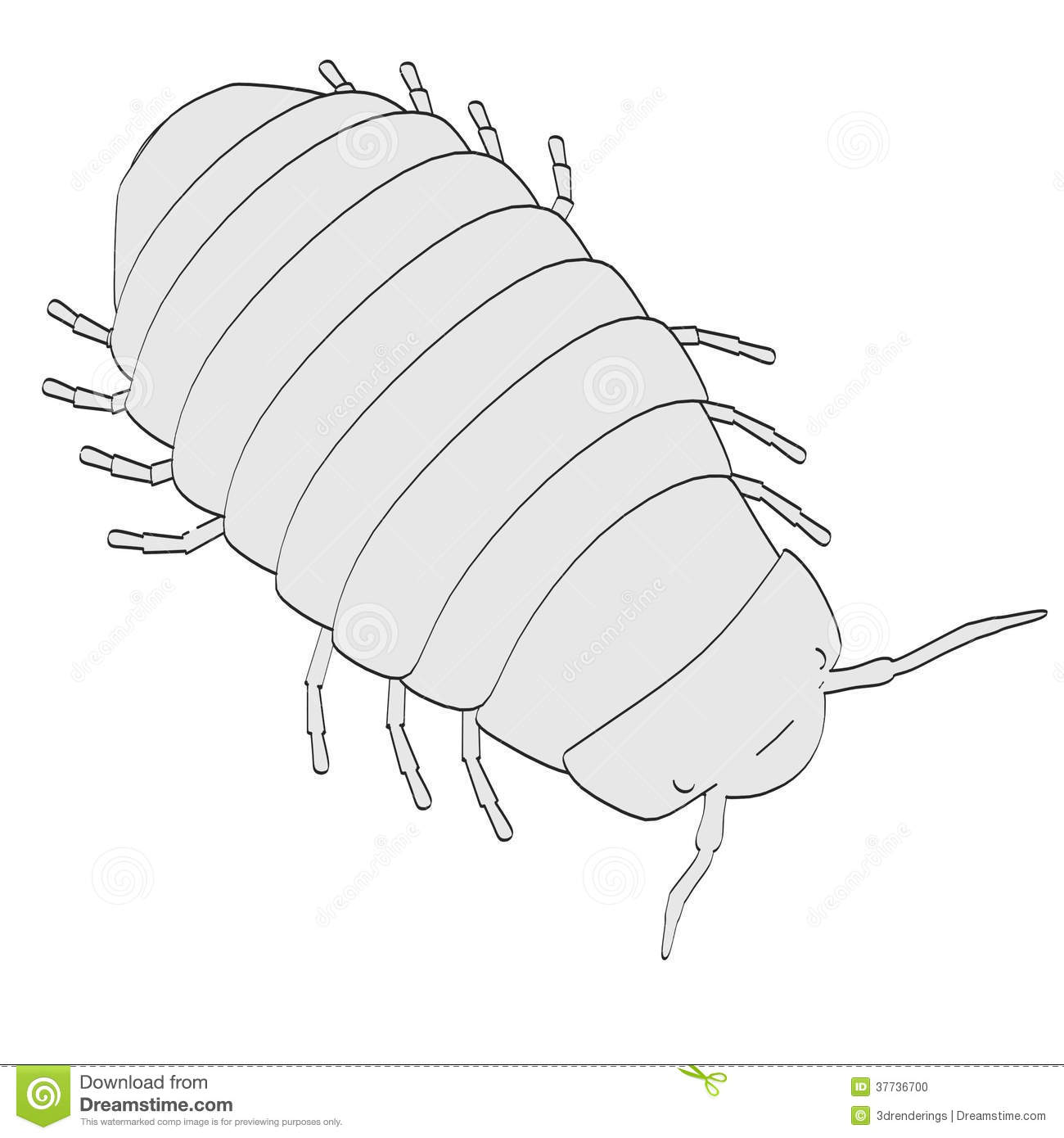 Image Of Pill Bug Stock Photo   Image  37736700