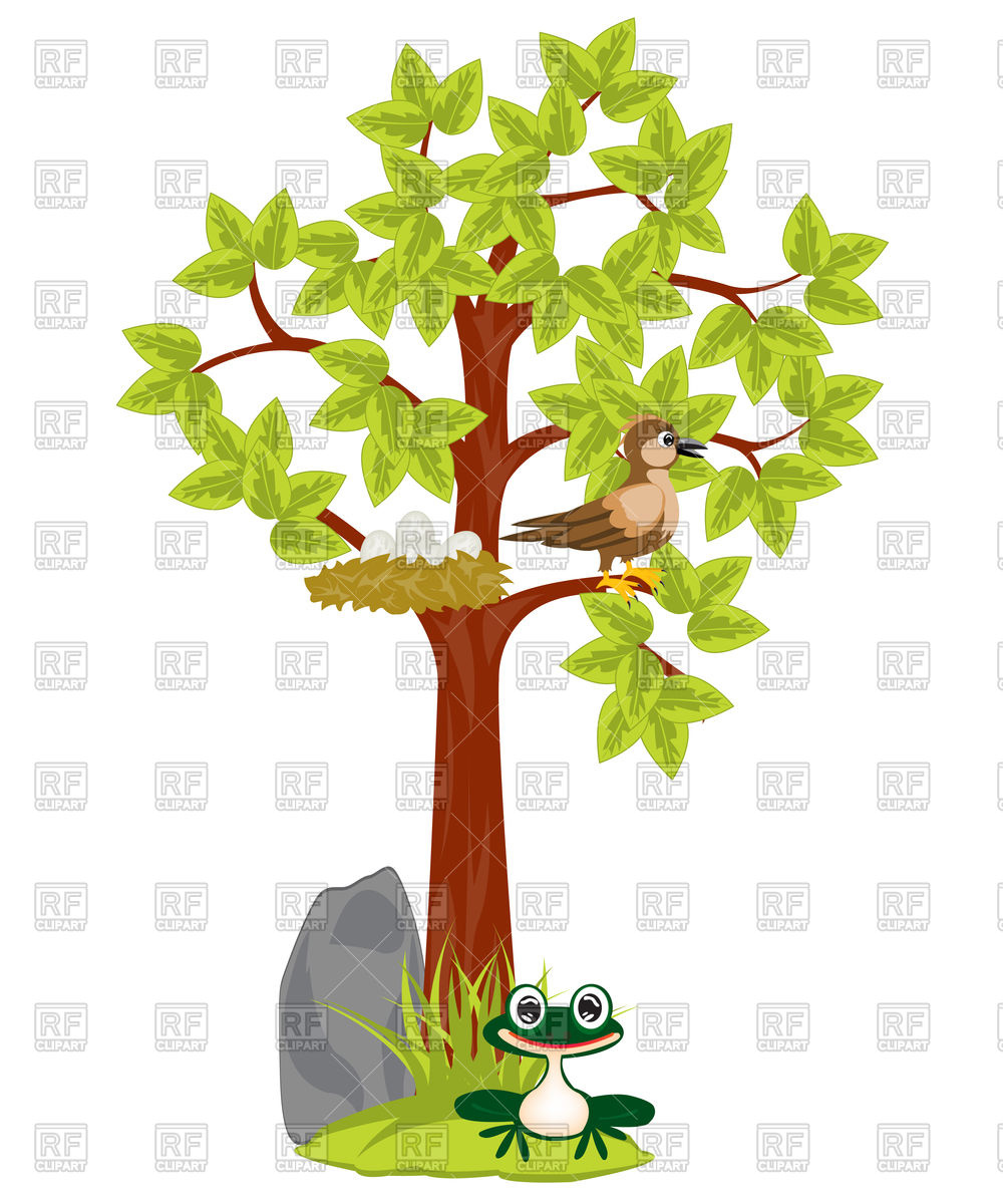 Tree With Nest And Bird Sitting On Him 91916 Download Royalty Free