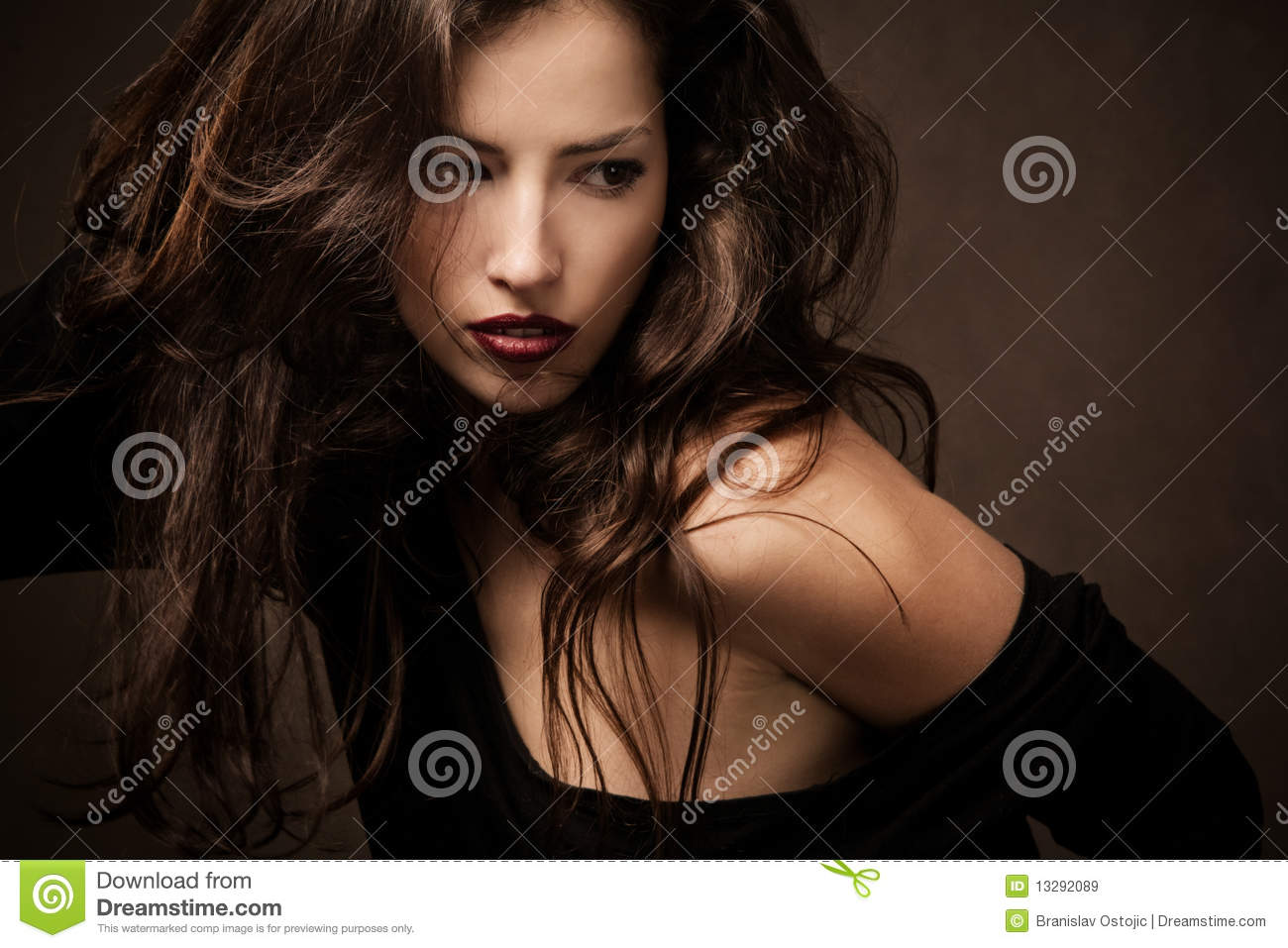 Wild Hair Royalty Free Stock Images   Image  13292089