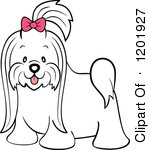 Cute Long Hair Maltese Dog With A Pink Bow Royalty Free Vector Clipart
