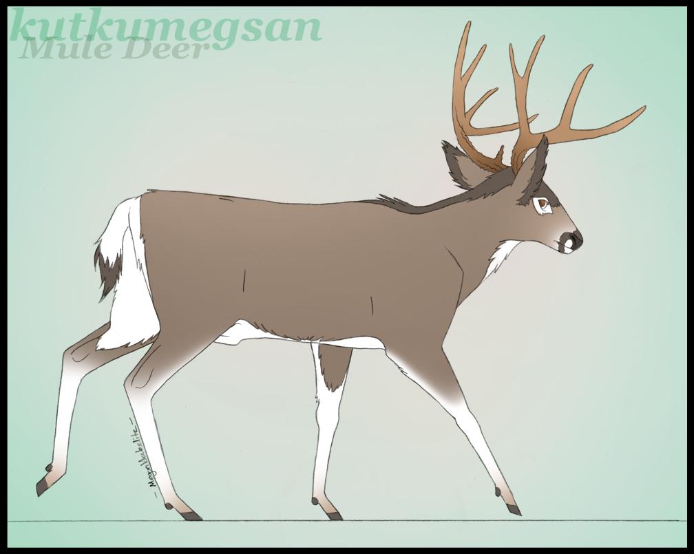 Mule deer silhouette clip art