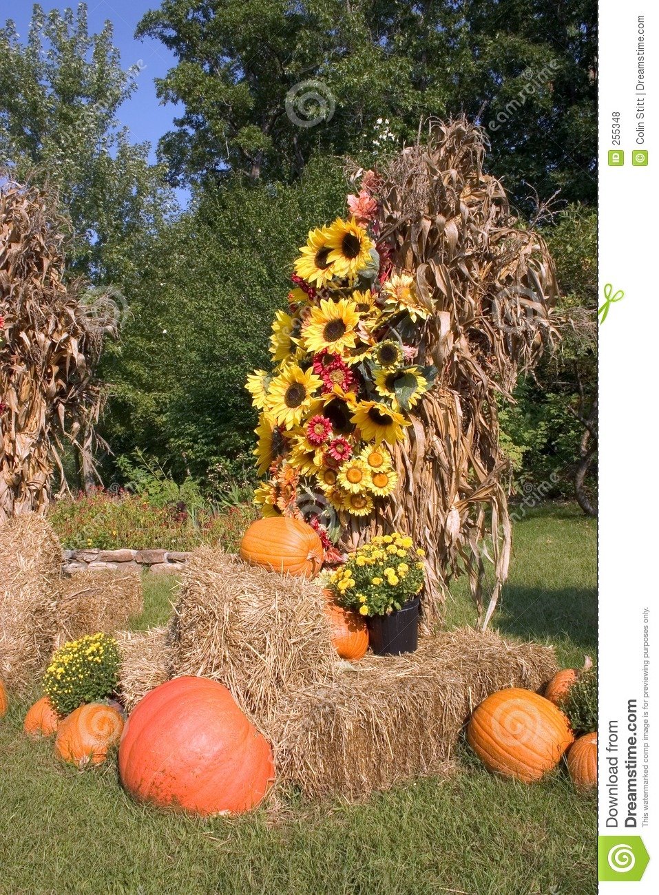Fall Decorations 2 Royalty Free Stock Photos   Image  255348