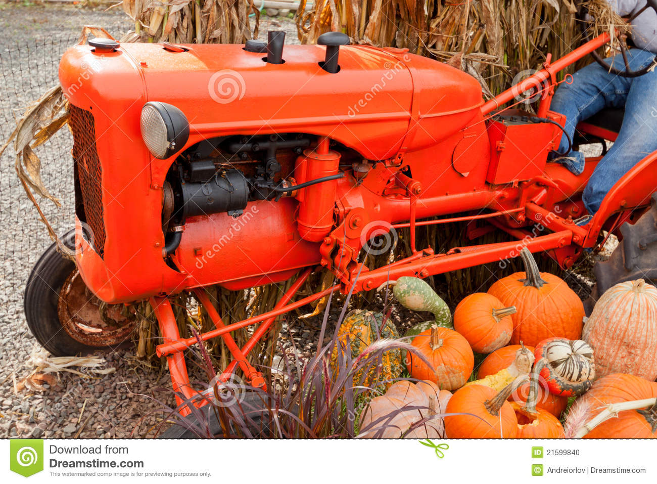 Fall Decorations At The Farm  Stock Photo   Image  21599840