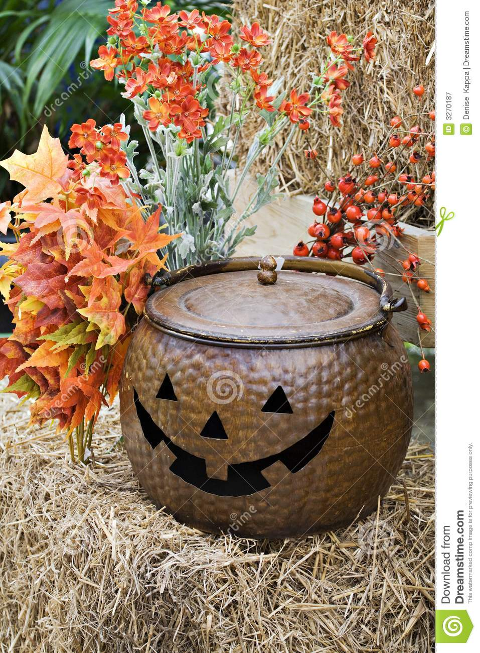 Fall Decorations Royalty Free Stock Photography   Image  3270187
