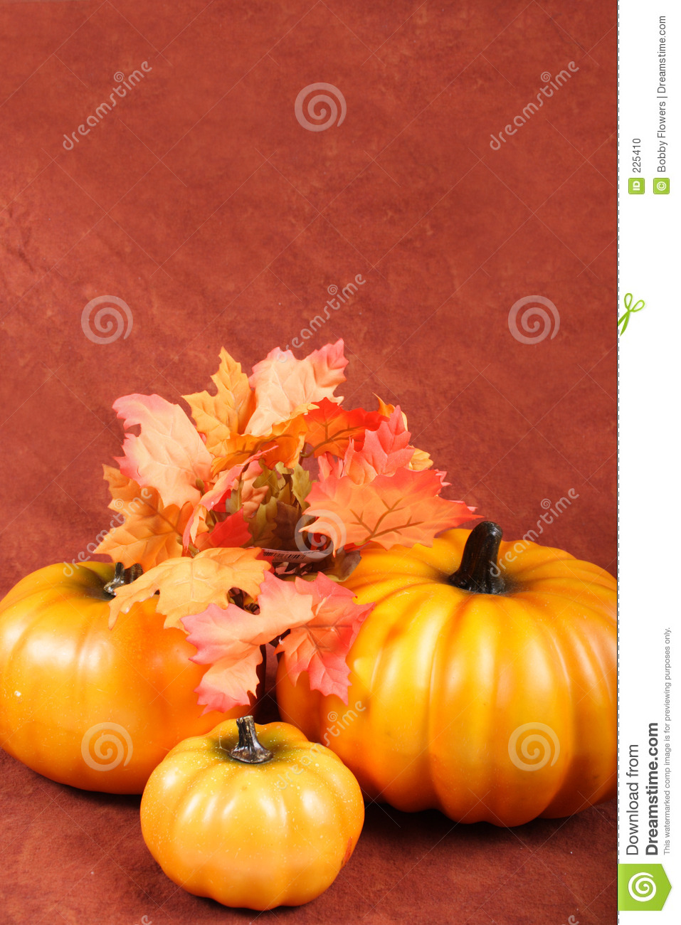 Fall   Thanksgiving Decorations Stock Photo   Image  225410