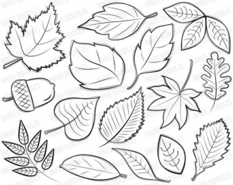 Fall Leaves Border Clip Art Black And White Images