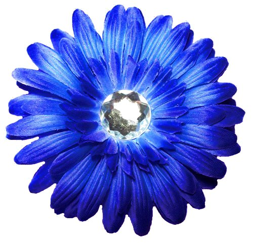 Source Http Hawaiidermatology Com Blue Blue Gerber Daisy Clip Art Htm