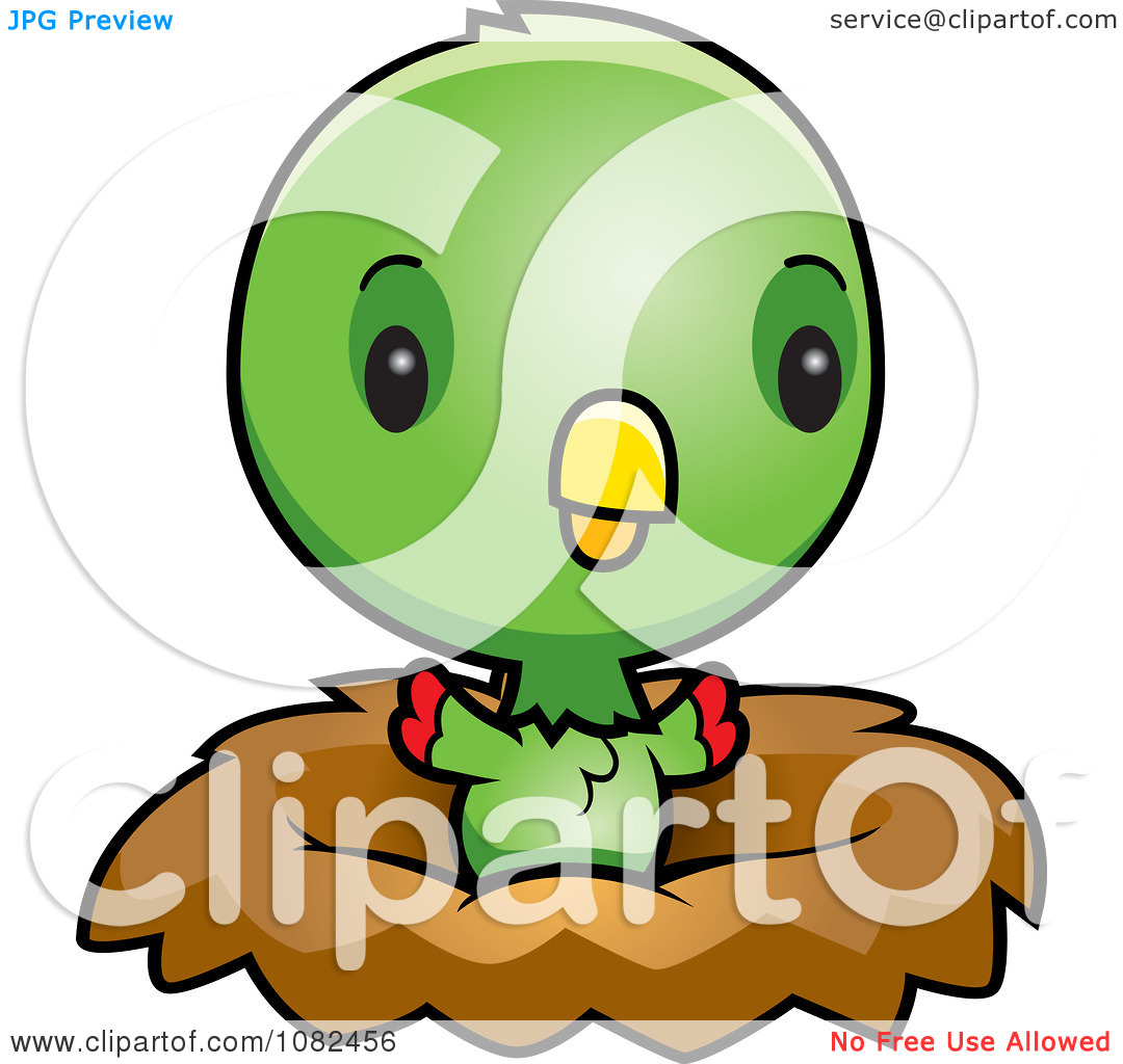 Clipart Cute Baby Parrot In A Nest   Royalty Free Vector Illustration