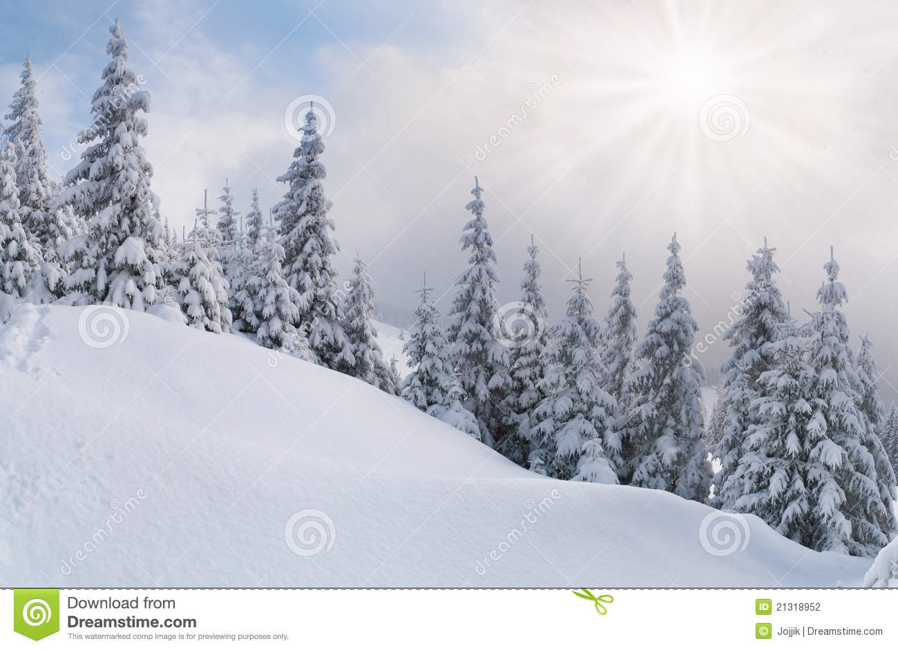 Snowstorm Stock Photography   Image  21318952
