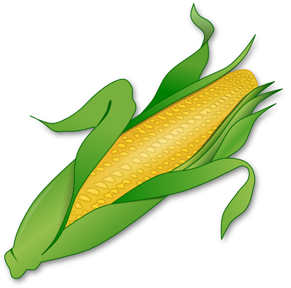Corn Stalk Clipart - Clipart Kid