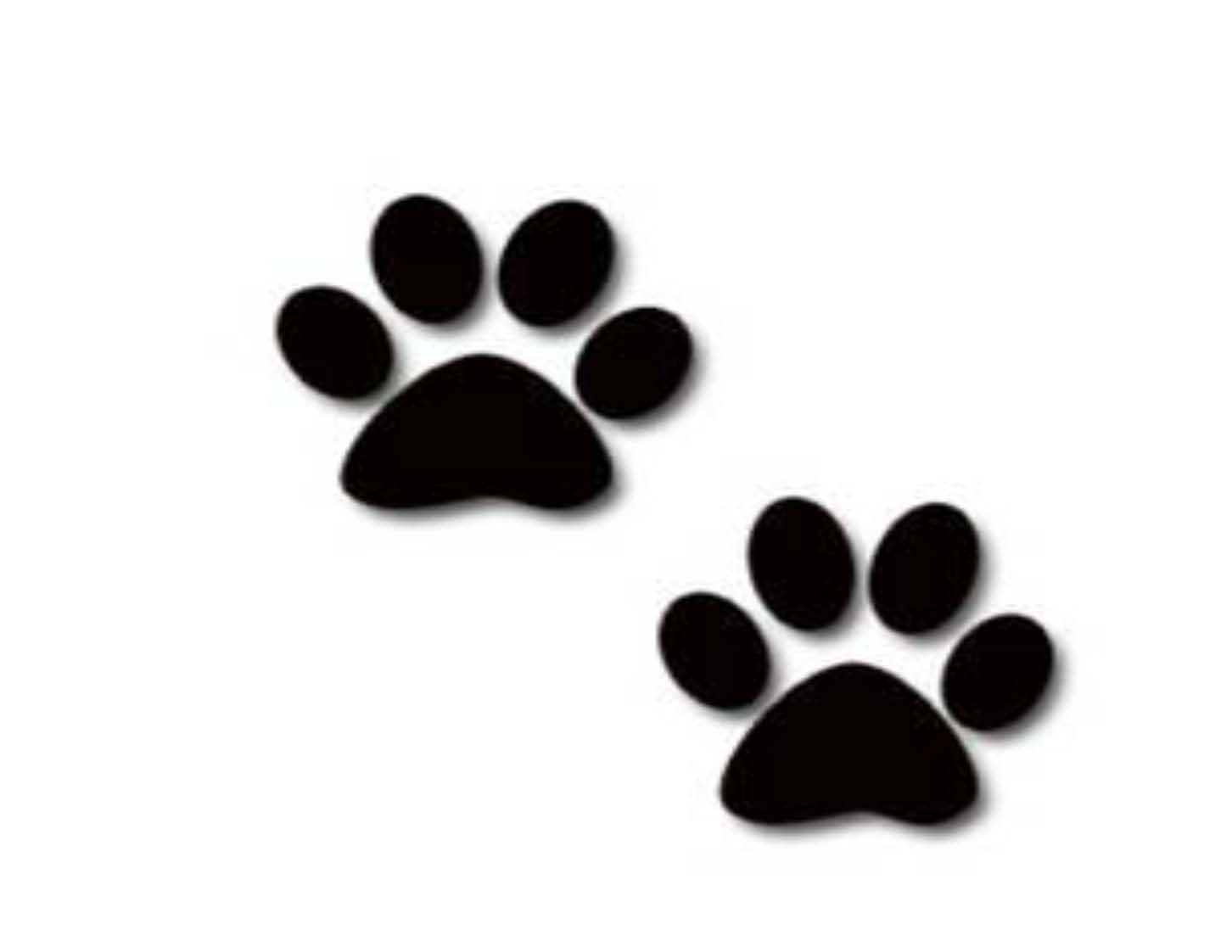 dog paw prints in - photo #10