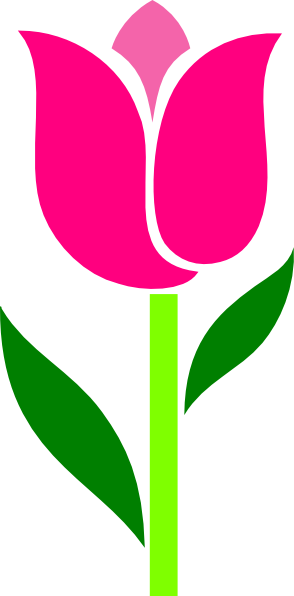 Pink Tulip Leaves Askew Clip Art At Clker Com   Vector Clip Art Online