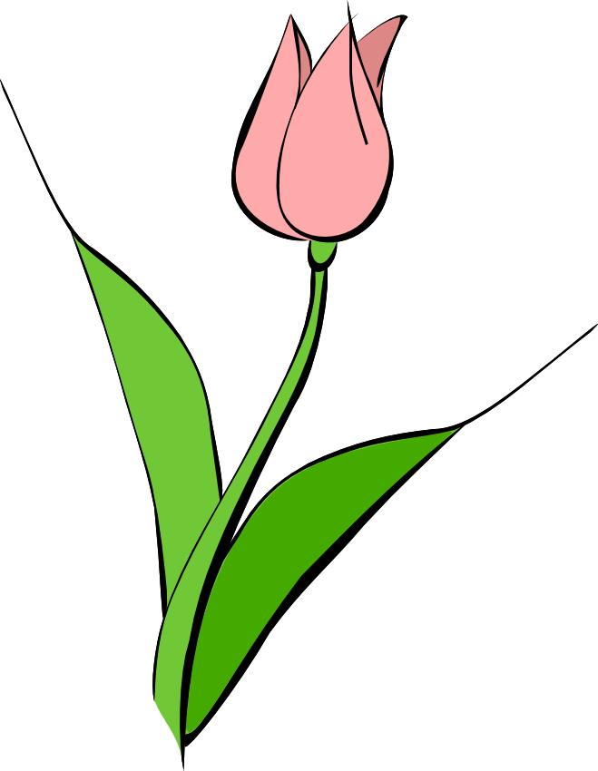 Pink Tulips Clip Art Search Pictures Photos