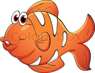 Clown Fish   Stock Photos   Colourbox Com