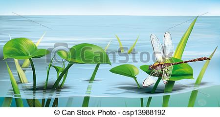 Stock Illustration   River Scene  Dragonfly On Water Grass Lake Water