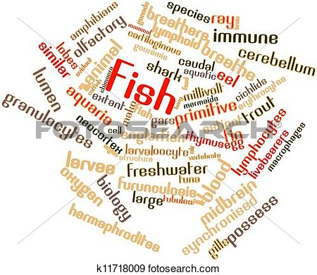 Stock Photograph   Word Cloud For Fish  Fotosearch   Search Stock