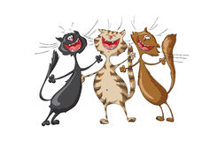 Three Happy Cats Singing Cheerful Song On Isolated Royalty Free Stock