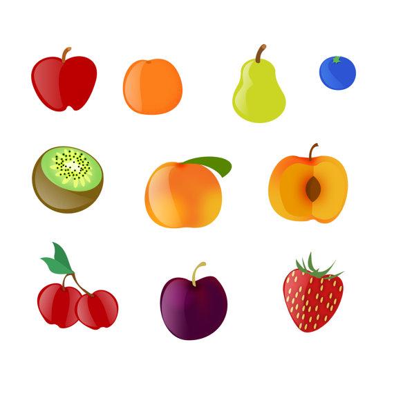 Fruit Clipart  Apple Orange Pear Kiwi Peach Cherry Plum