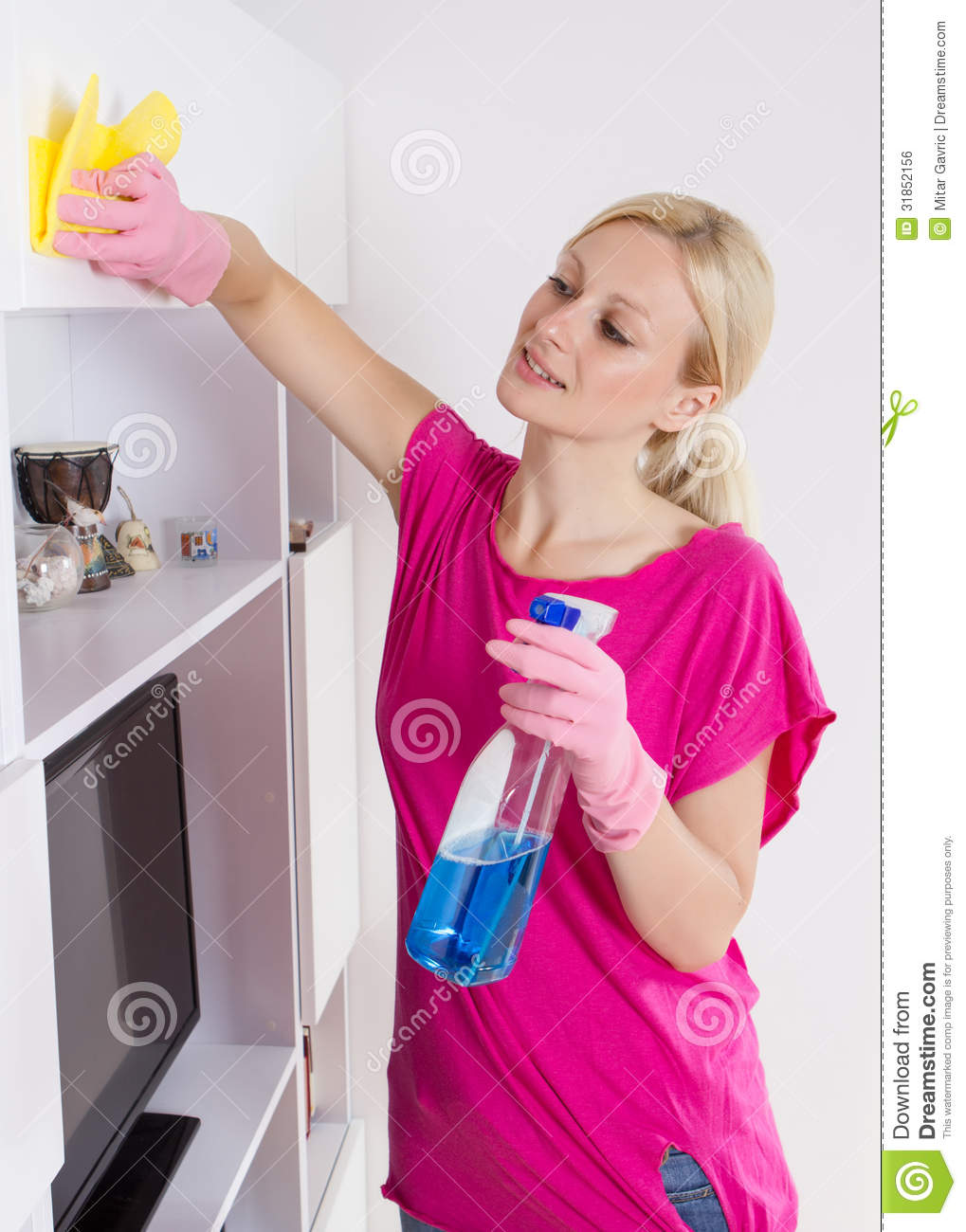 Woman Cleaning Home Royalty Free Stock Image   Image  31852156