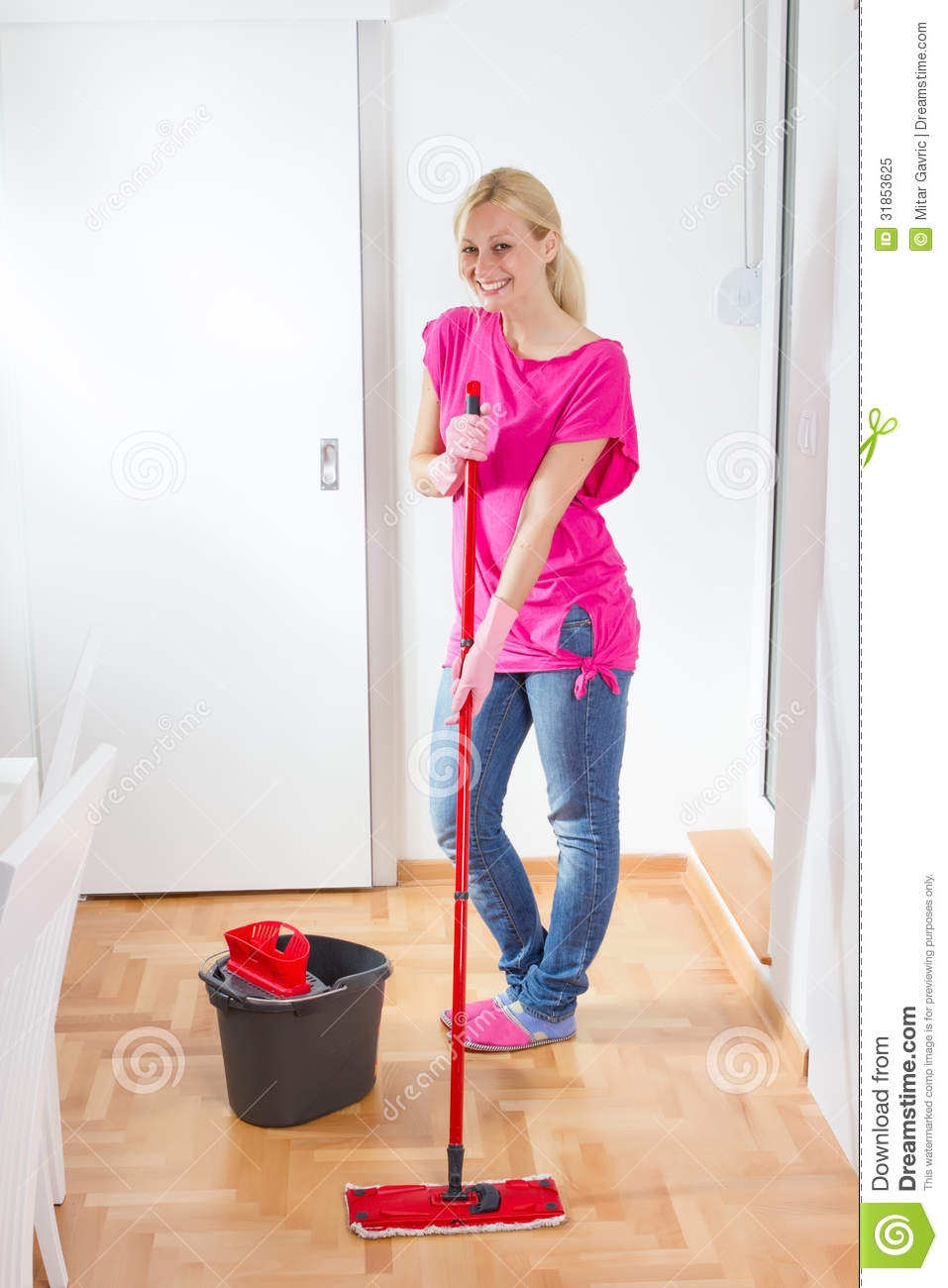 Young Woman Cleaning Home Royalty Free Stock Photo   Image  31853625