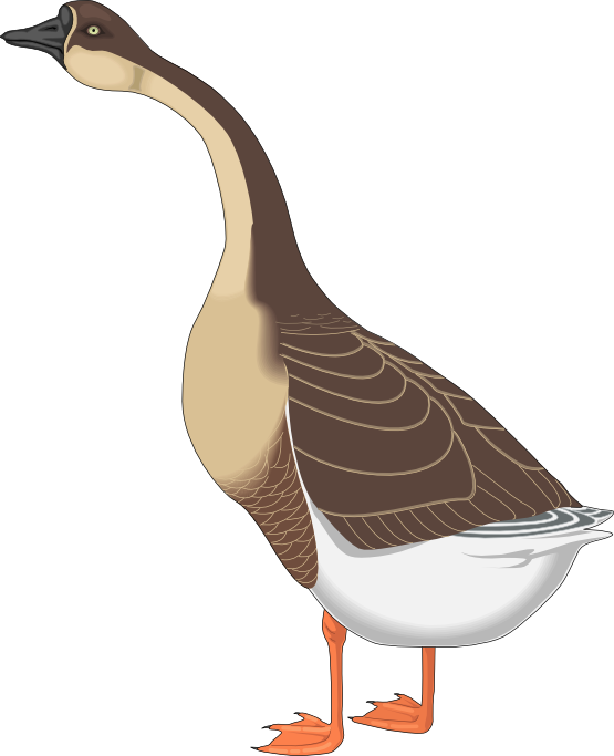 Funny Goose Clipart - Clipart Kid