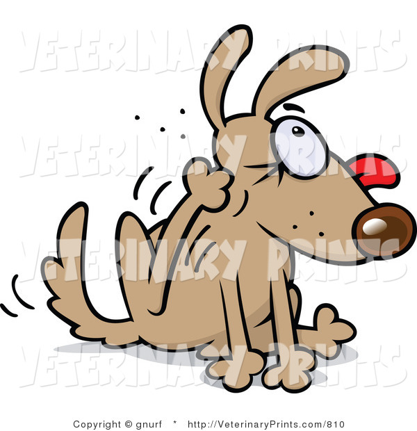 Art Print Of A Cartoon Flea Infested Brown Dog Going Crazy While