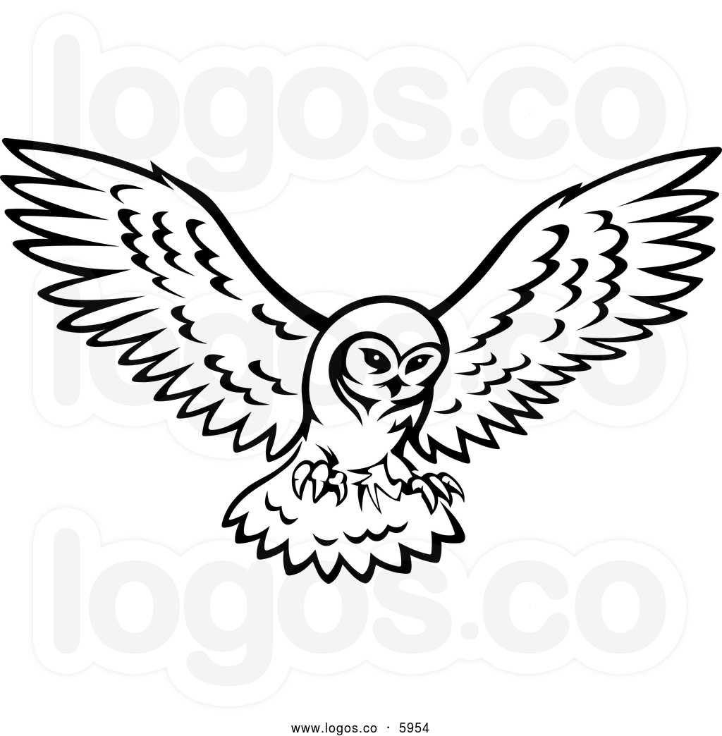 Flying owl drawings black and white - photo#7