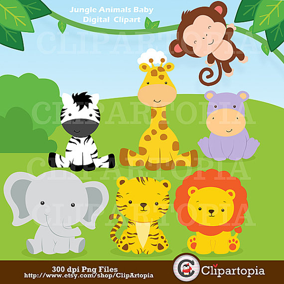 Jungle Animals Baby Digital Clipart   Safari Animals Clip Art   Zoo
