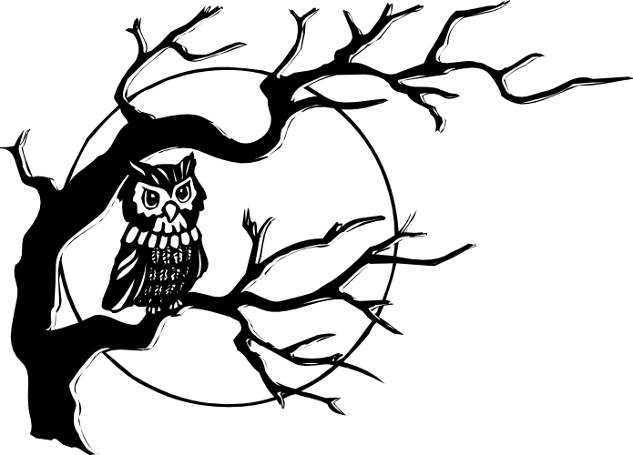 Owl Clipart Black And White Free Owl Clip Art Black And White I19 Png