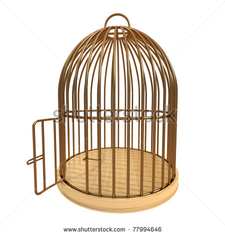 Bird Cages Shutterstock Eps Vector Id 110502425 Clipart   Free Clip